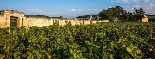 Top vína z Francie