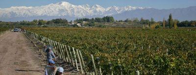 Vína ze Santa Ana osloví každého