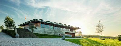 Vína z Moravy – Novinka v nabídce