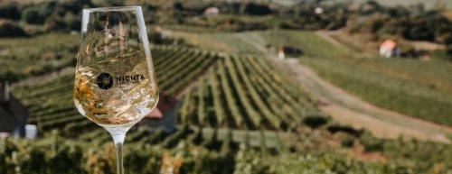 Top vína ze Slovenska